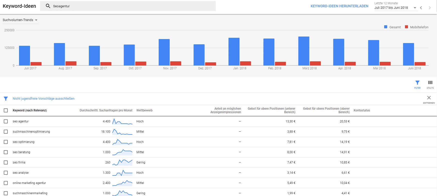 Beispielhafte Suchanfrage im Google Keyword Planner