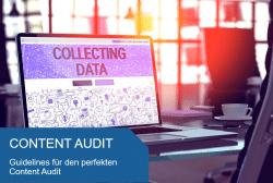 Titelbild Content Audit